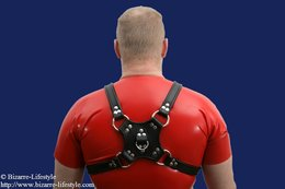 Leather doggy walking harness